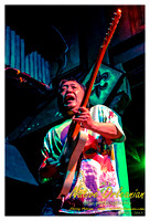 nofp_papa_grows_funk_tipitinas_jm_062913_008