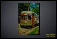 st_charles_ave_streetcar_2008_16x24_gallery_wrapped_canvas_jm_nofp©