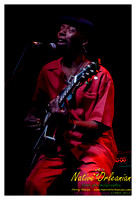 joe_krown_trio_dba_jm_122312_006