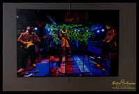 30x45_7_walkers_n_big_sam_tipitinas_2011_30x45_gallery_wrapped_canvas_jm_nofp©