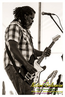 alvin_youngblood_hart_tbois_blues_fest_jm_040414_005