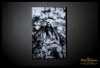 second_chief_joseph_golden_eagle_mardi_gras_indians_mardi_gras_2012_20x30_gallery_wrapped_canvas_jm_nofp©