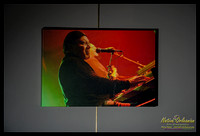 art_poppa_funk_neville_tips_funky_meters_2011_16x24_gallery_wrapped_canvas_jm_nofp©