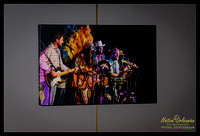 vow_allstars_the_birchmere_2011_16x24_gallery_wrapped_canvas